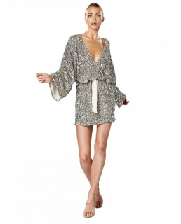 Winona Silver Mingle Long Sleeve Dress