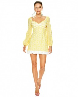 Talulah Yellow Margarita Mini Dress